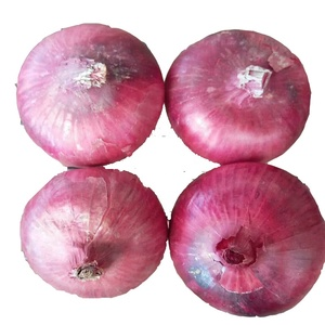 China best price red onion wholesale 🇨🇳 - Alibaba