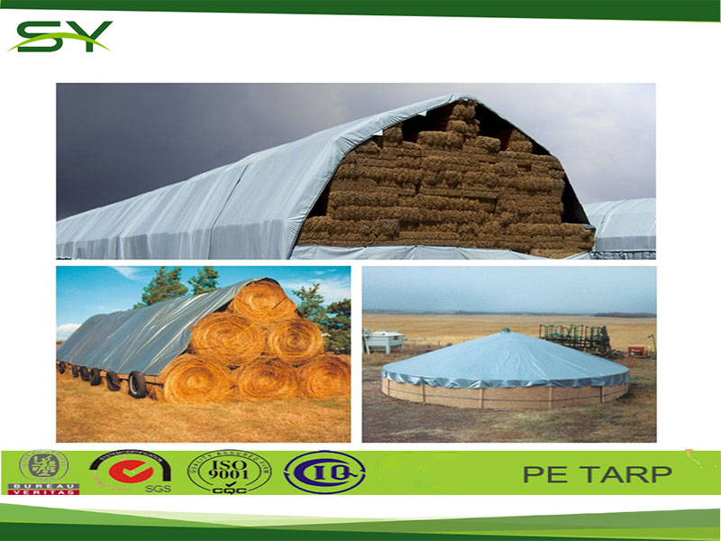 Professional manufacturer tent material tarpaulin materials tent fly material grow tent material & Professional Manufacturer Tent Material Tarpaulin MaterialsTent ...