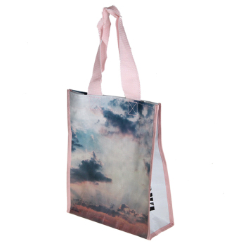 New Products Customize Eco PP Woven Bag for shopping