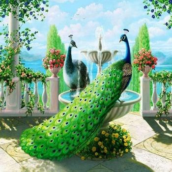 Ev Dekorasyon Için El Yapımı Tavuskuşu Elmas Boyama Buy Elmas
