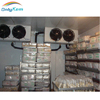 Seafoods refrigerating room freezing room for frozen sea urchin
