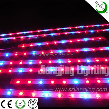 New Design !! Full Spectrum Led Grow Light 3w Chip Epistar Grow ...