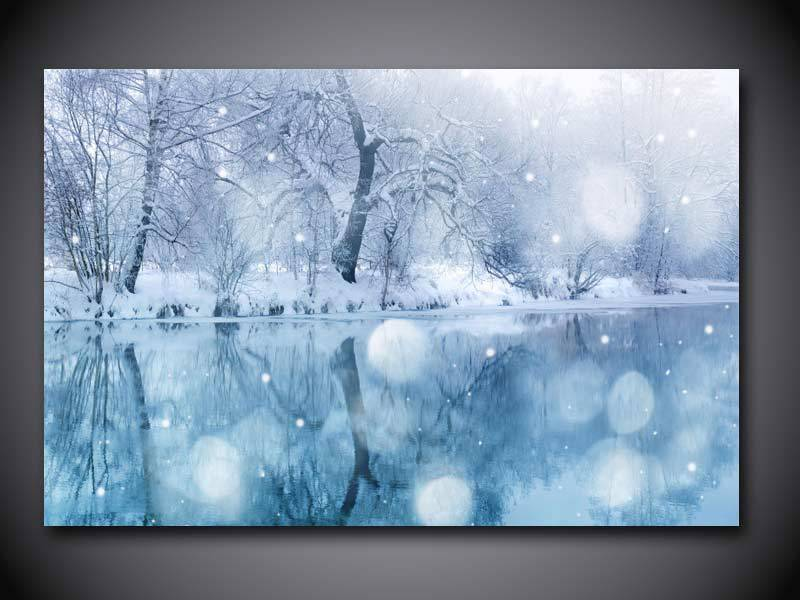 1 Panel Free shipping Winter Snow print painting on canvas Wall Art Picture Home Decoration/we051