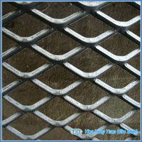 Galvanized Steel /Aluminum Expanded Wire Mesh