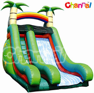 palm tree inflatable slide in the pool edge/pool slide