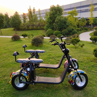 Holland Warehouse 2019 Best selling sport electric scooter cool citycoco
