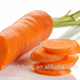 fresh cheap carrot in China with OEM quality