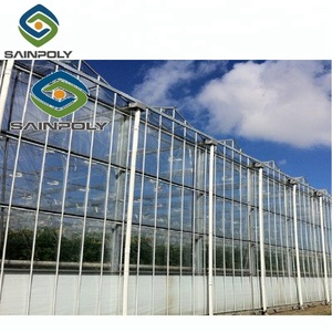 multispan agricultural glass greenhouse production equipment