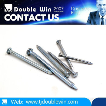 Electric Galvanized Square Boat Nail With Bottom Price
