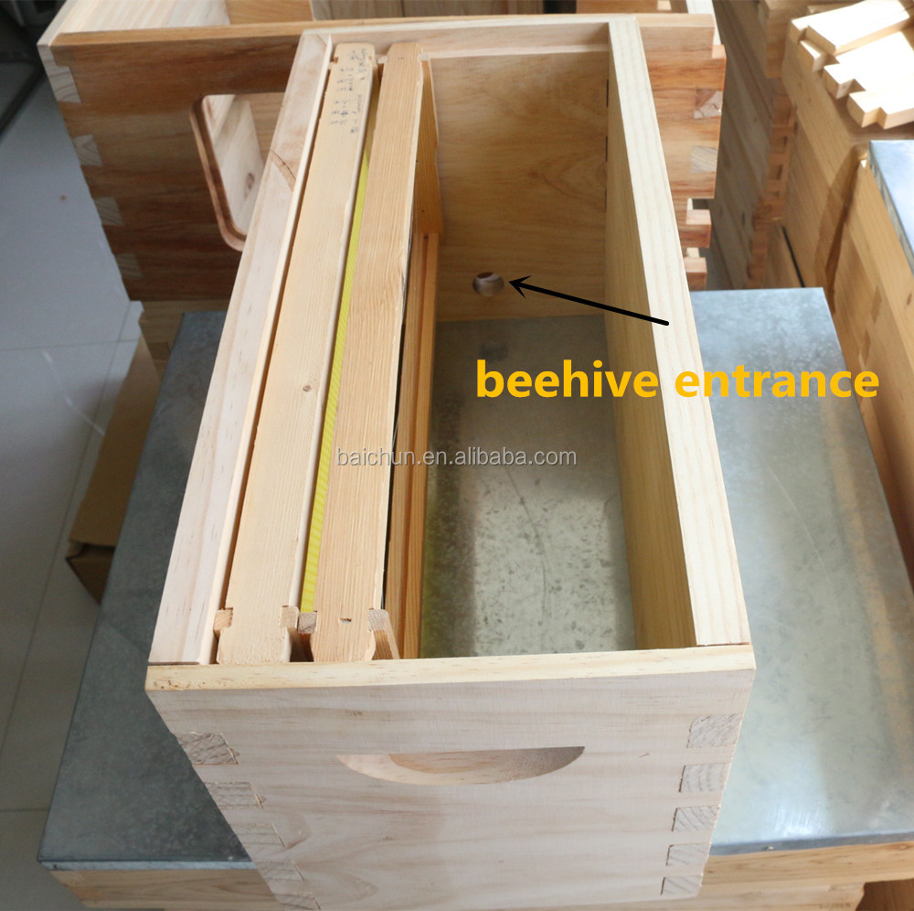 Natural NUC Beehive box include 5 frames - Langstroth beehive queen