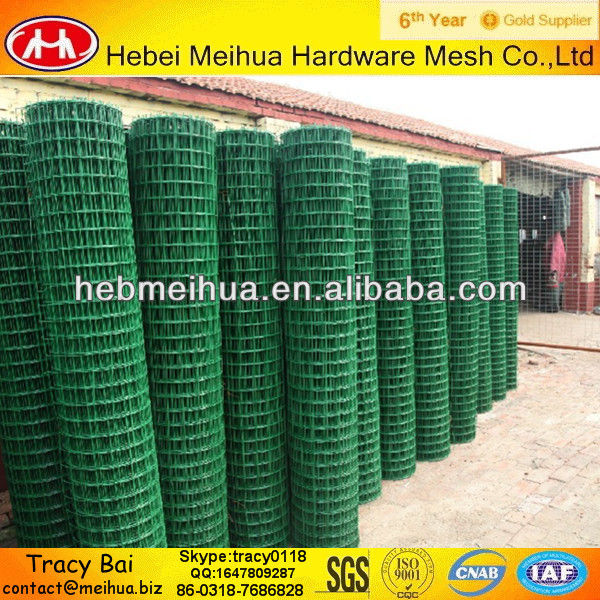 Holland electric&pvc welded wire mesh(manufacturer)