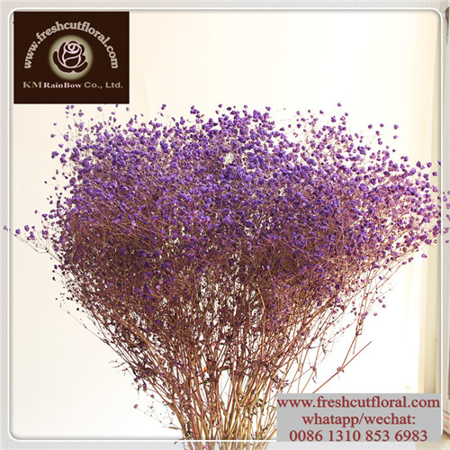Whole Dried Pressed Flowers Supplieranufacturers At Alibaba Com