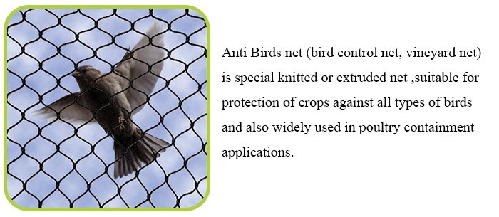china factory anti bird screen plants cover mesh with uv protection