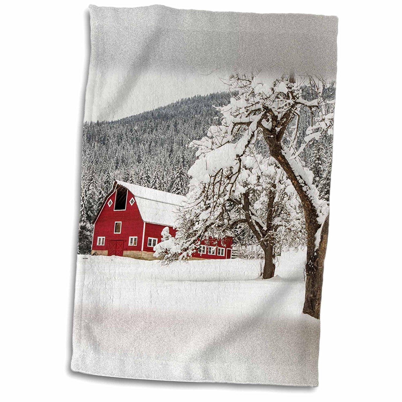 3dRose Danita Delimont - Barns - Fresh snow on red barn near Salmo, British Columbia, Canada. - 12x18 Towel (twl_206245_1)