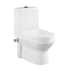 Sanitary Ware Product One-piece Water Jet Toilet
