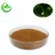 Best price neem leaf extract powder for sale