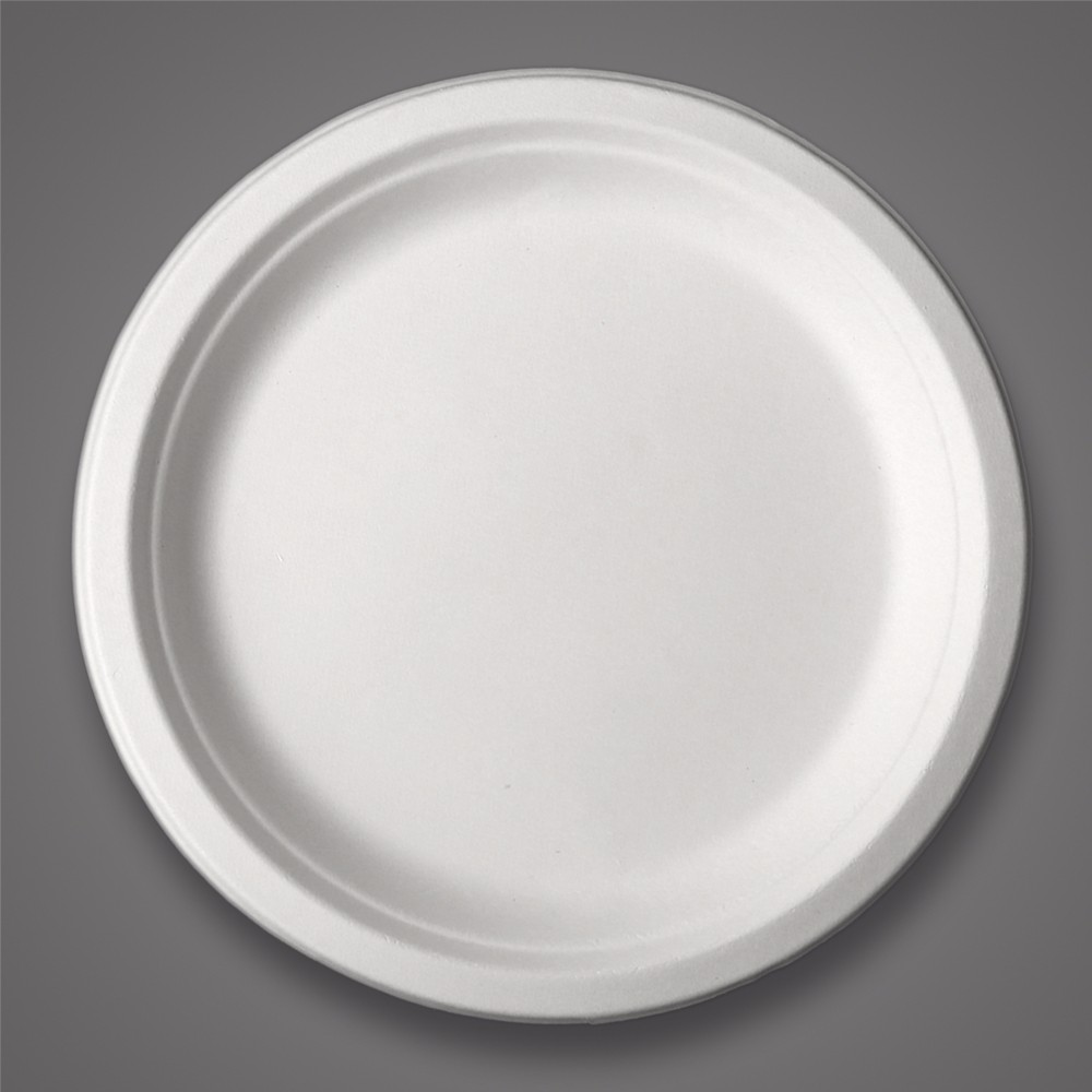 Sugarcane bleached paper pulp biodegradable <strong>plates</strong> disposable food <strong>plates</strong> bagasse tableware