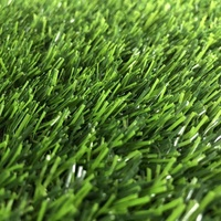 Cheap Synthetic Grass In Fresno Artificial Grass Carpet For Garden Lawn Installers Perth