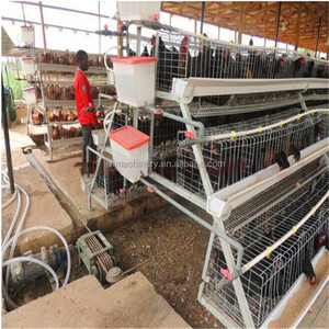 Super September Hot Selling and Popular 10000 Layer Chicken Cage for Sale