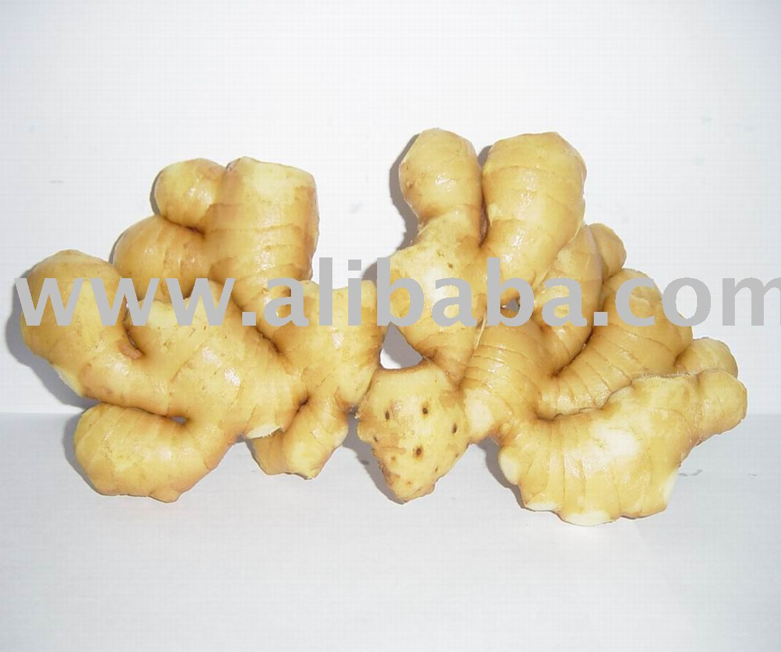 Fresh Indian Ginger / Garlic,Adrak Lahsun For Export