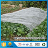 Spunbond Non-Woven Fabric High Quality Agriculture Nonwoven Fabric For Ground Cover Weed Control