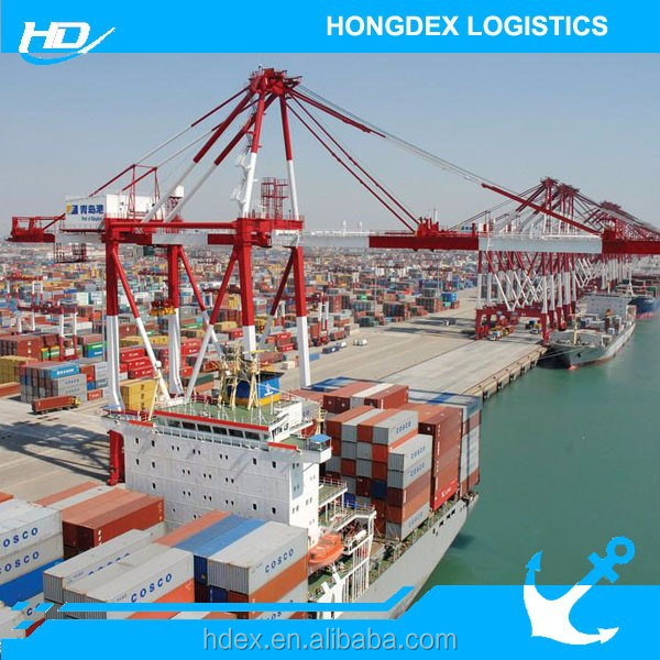 Sea Transport to Malaysia Forwarding Agent in China