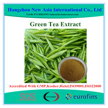 Pure Green Tea Extract Polyphenols 95% UV
