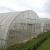 Easy Assemble Modular Retractable and single tunnel greenhouse for vegetables