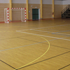 /product-detail/commercial-vinyl-8mm-resinlient-sport-basketball-floor-mat-covering-60731279342.html