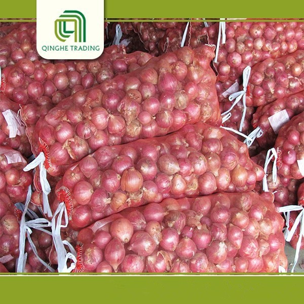 cheap market price for red onion red onion exporter from china