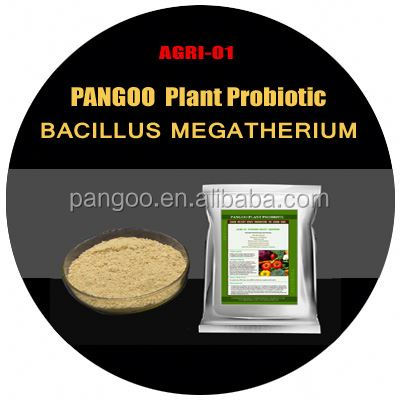 Probiotic fertilizer/PANGOO AGRI-01 Plant Grower organic soil amendments for vegetable garden/Soil Conditioner