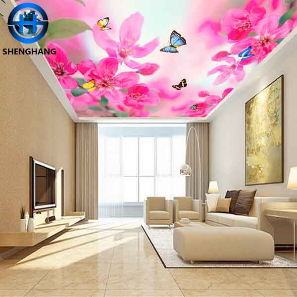 Decoration Mdf Ceiling, Decoration Mdf Ceiling Suppliers and ...
