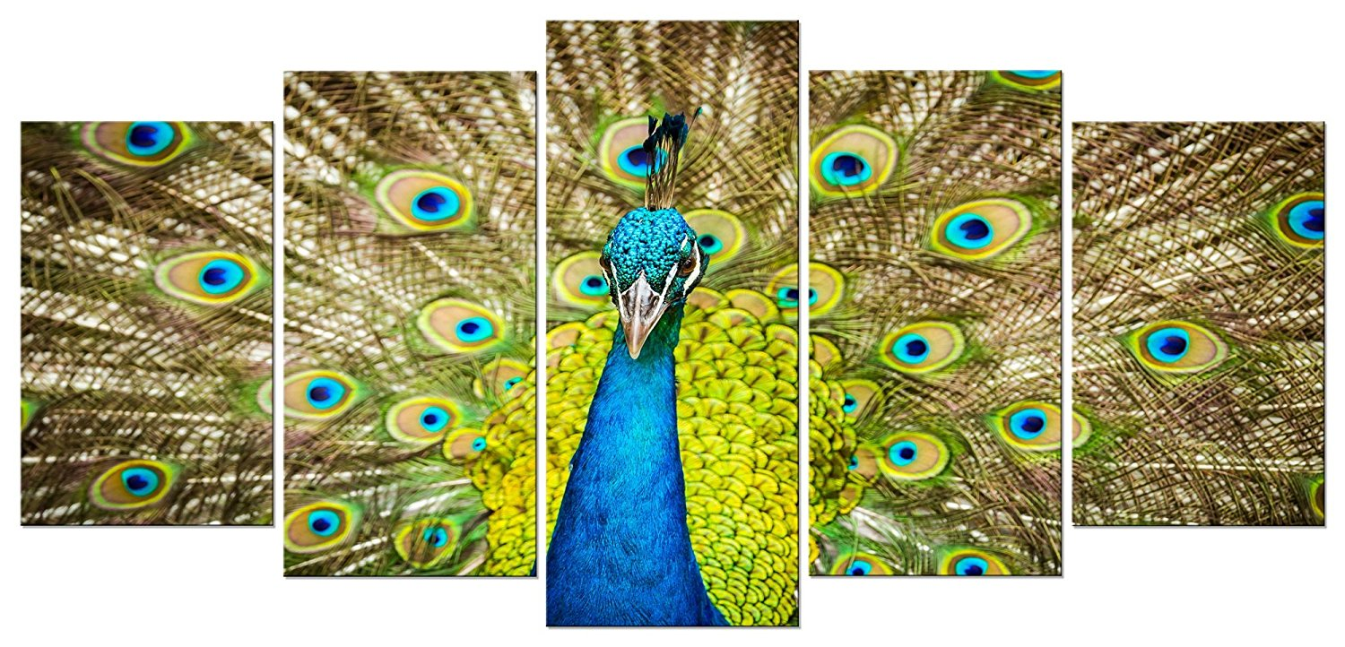 Pyradecor Peacock 5 Panel Modern Stretched and Framed Animals Artwork Landscape Giclee Canvas Prints Pictures Paintings on Canvas Wall Art for Living Room Bedroom Home Decorations
