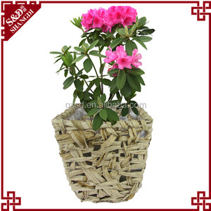 S&D new material handmade square shaped indoor plant nursery