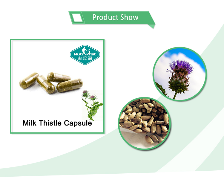 Natural Milk Thistle Extract Silymarin Capsule Milk Thistle