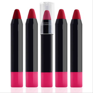 Wholesale Pencil Designs 12 Colors Free Sample Lip Stick OEM Cosmetic Beauty Matte Lipstick with Black Tube