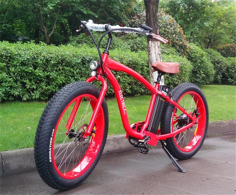 Hasky 20 Inch Size Fat Tire Electric Bike Mini Cheap