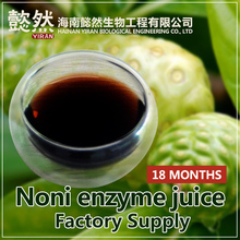 Pure noni juice concentrate OEM Supplier,nutritional drink