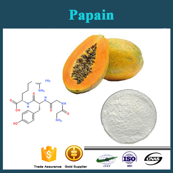 Factory Price Papain for Dietary Supplement and meat tenderizer papain powder