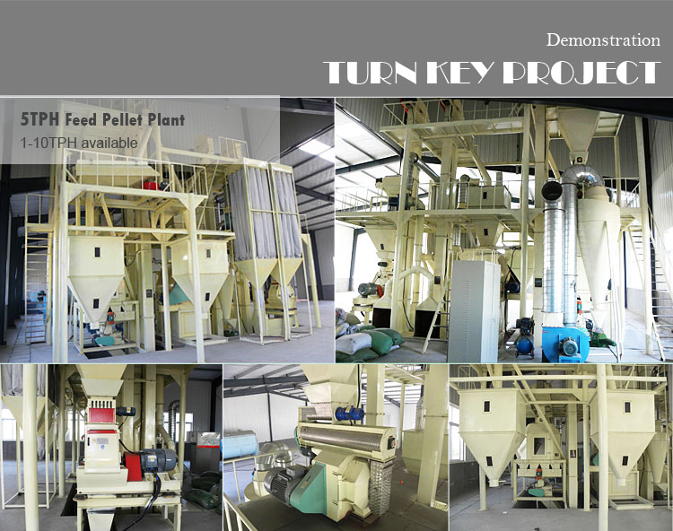 2 ton per hour small animal feed pellet mill plant project designed chicken cattle fish poultry feed production machine