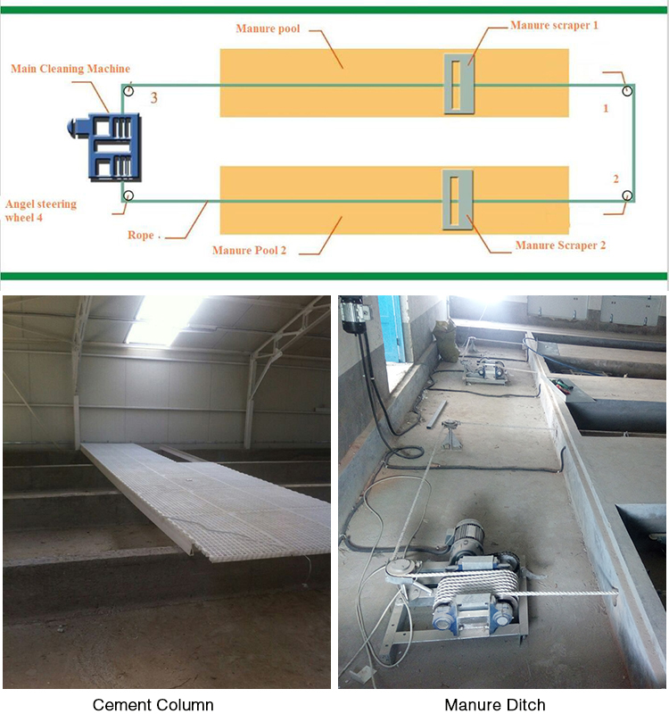 Goldenest Supply Poultry Farming Equipment Manure Scraper Cleaning System