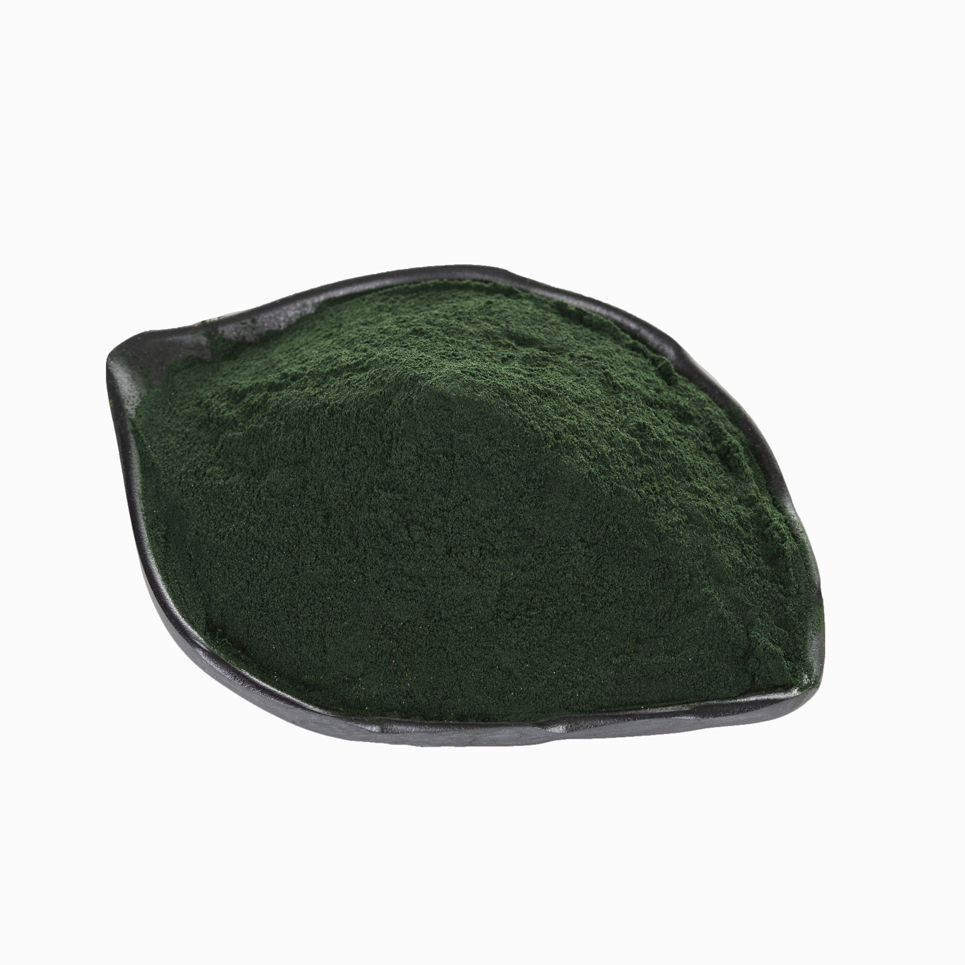 Produce and Provide Pure Natural Algae Animal Feed / Green Algae for Animal Feed