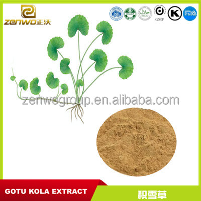 Nature children whitening cream skin care centella asiatica gotu kola extract powder