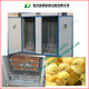 eggs chick incubator machine/96 egg hatcheries incubator machine/ 500 eggs incubator