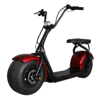 china import double seats harley scooter 1000W with fat tire