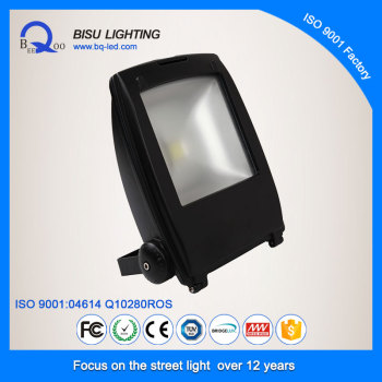 Bisu FS170 COB high power IP65 outdoor led flood light 60W