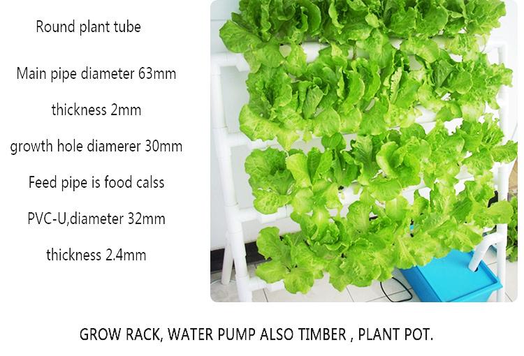 Planting Vegetable Leafy Plants Small Grow Rack Pvc Pipe