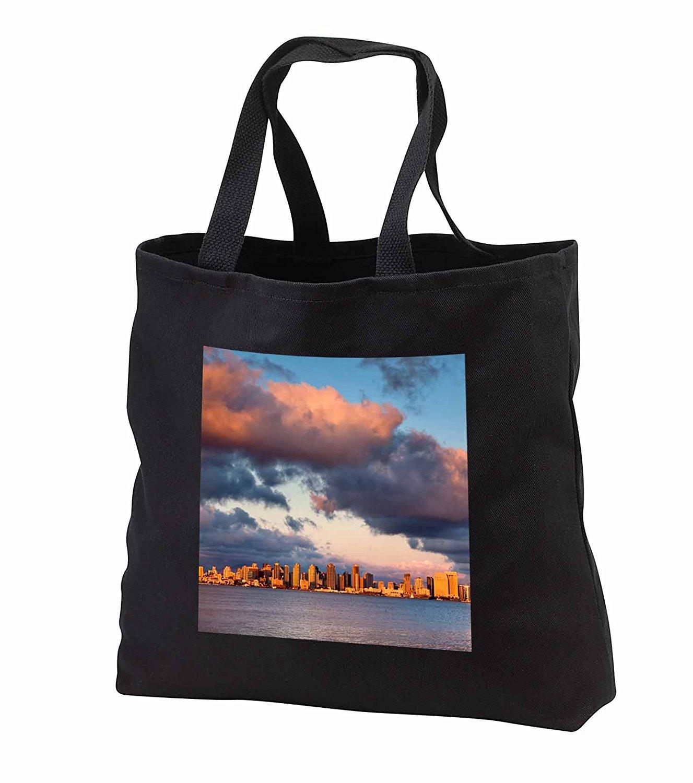 3dRose Danita Delimont - San Diego - California, San Diego, City skyline across San Diego Bay - Tote Bags