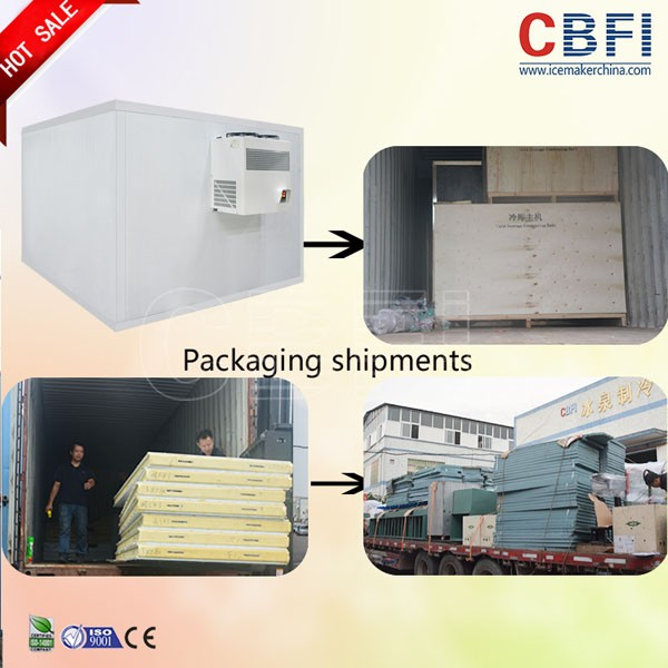 CBFI clean coldrooms for sale type for freezingg-56