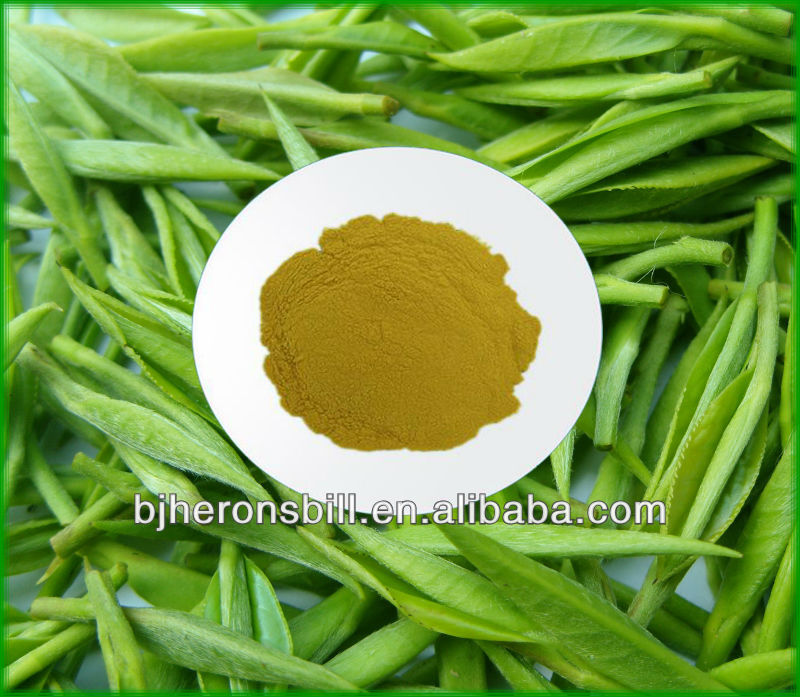 Instant Green tea powder Discount price-- free sample now!